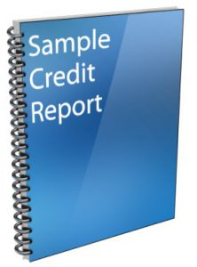 sample credit report download